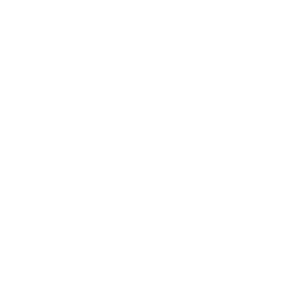 Optimum_Logo_Weiß