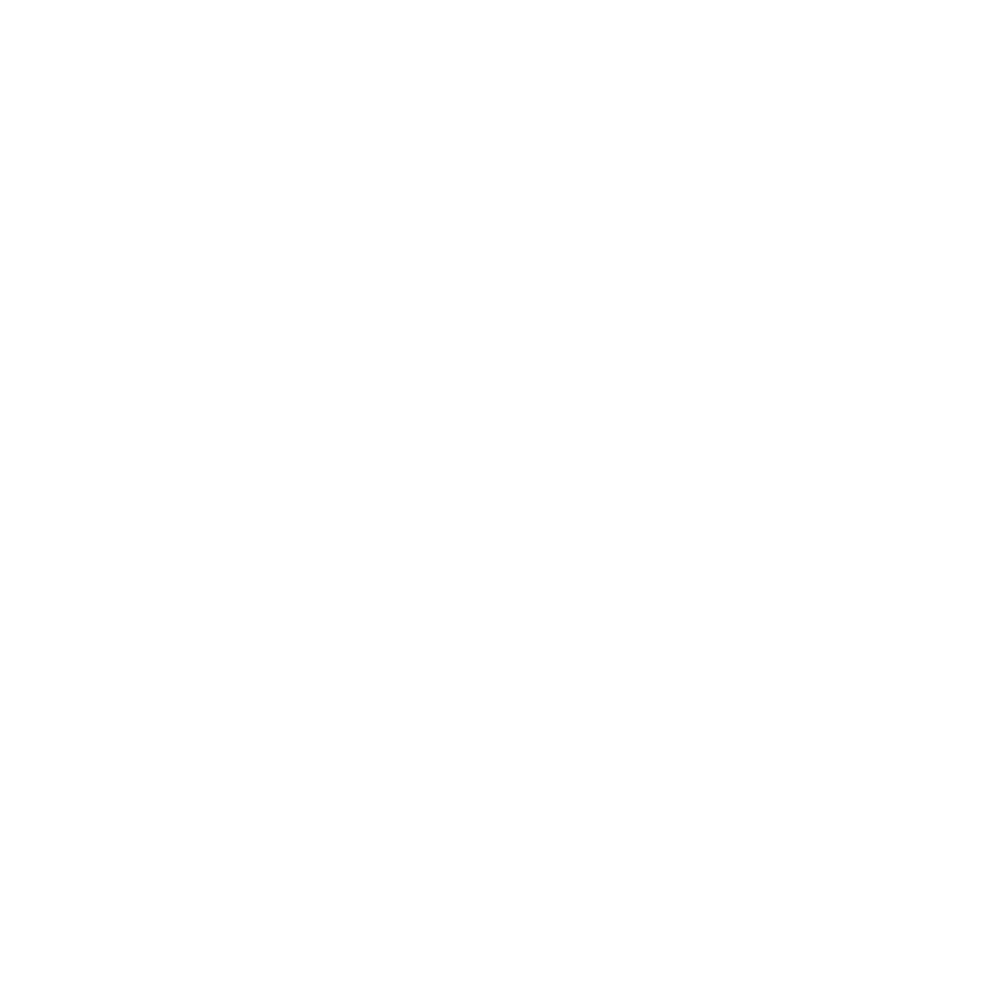 Pfitzemeier_Logo_Weiß